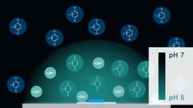 Process of pH modulation